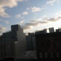 New York windows