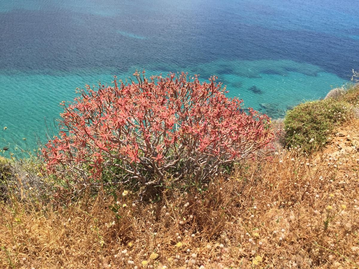 Greek sea, Greek islands, urbantraveltales, travel, Greece